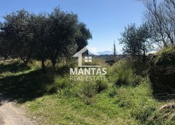 Building Land for sale - Atsoupades Municipality of Ellios Pronnon