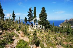 Building Land outside village for sale - Assos Municipality of Erisos