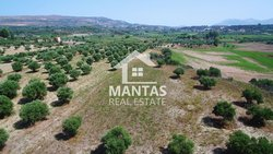 Building Land outside village for sale - Mantzavinata Municipality of Paliki