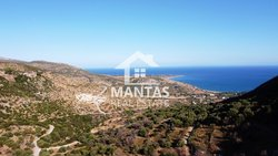 Building Land for sale - Markopoulo Ellios Pronnon
