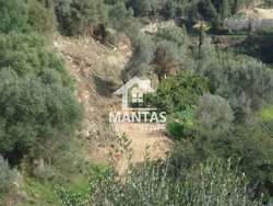 Building Land outside village for sale - Trapezaki Municipality of Livathos