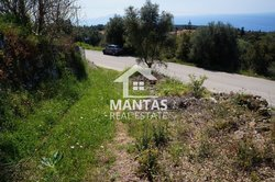 Building Land for sale - Steliata  Erisos